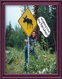Rain Bear in Alaska
